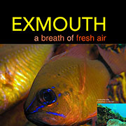 Exmouth Sportdiving 2008