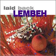 Lembeh Sportdiving 2010
