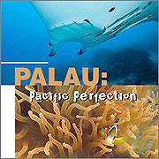 Palau Sportdiving 2008