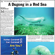 Red Sea - Divelog 2015