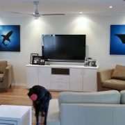 80cm Tiburon (colour) and Sunray (colour) either side of flat screen tv in lounge room