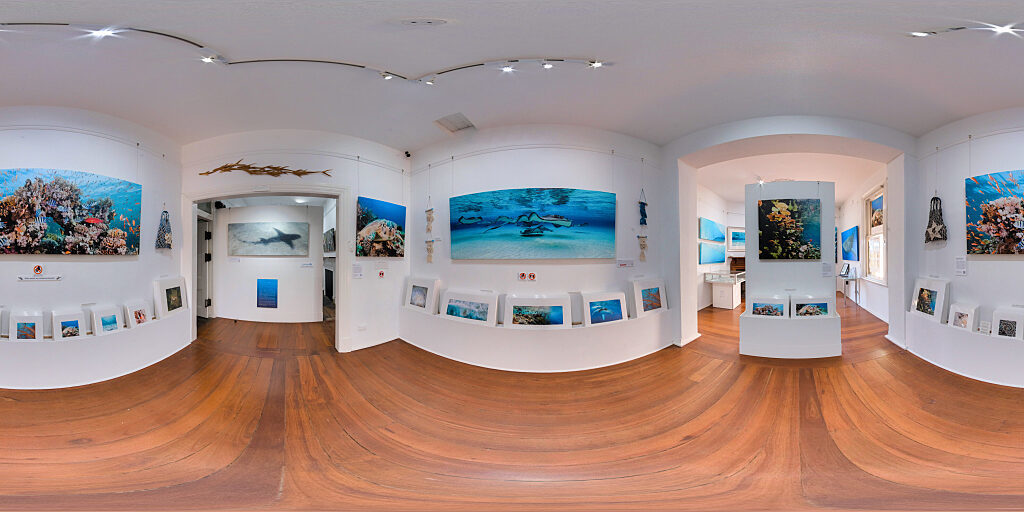 Click for virtual 3d tour of my gallery